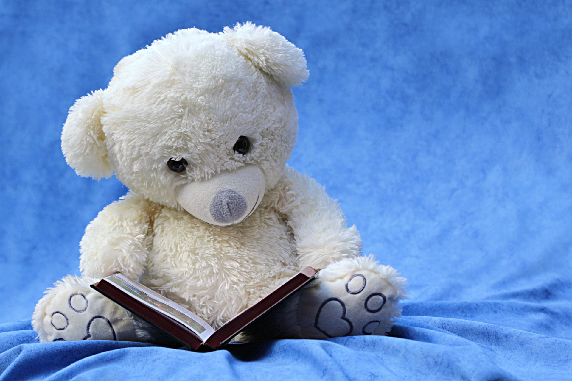 even stuffed animals love to learn